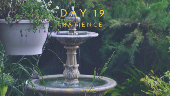 Day 19: Patience